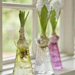 Engraved glass hyacinth bulb vases