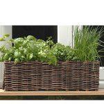 Window box plant and grow set