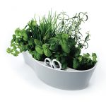 Nifty herb garden planter pot