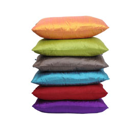 Reduced price silk cushion