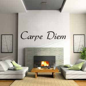 Seize the Day vinyl wall decal sticker