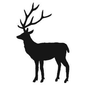 Small deer decal wall sticker