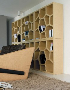 Designer bookcase for a modern home