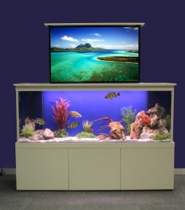 Innovative TV furniture tank