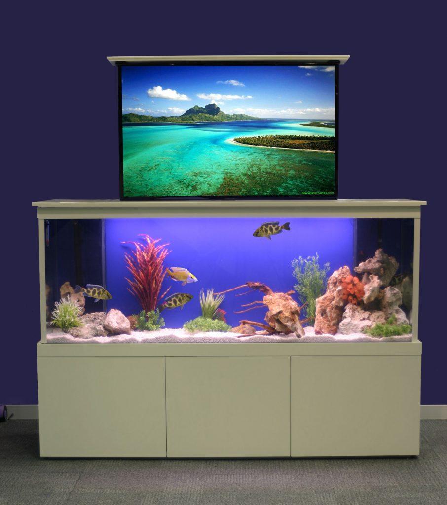 Fresh design concept tv concealing aquarium fresh for Fresh design blog
