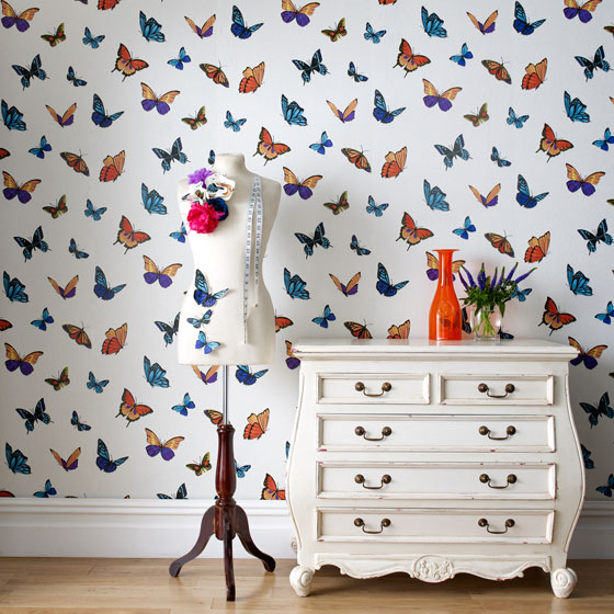 Designer wallpaper for £20