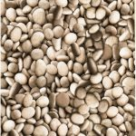 Fab Friday Bargain: Natural pebble beach design wallpaper