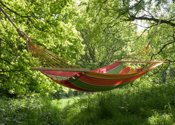 Relax in a garden hammock