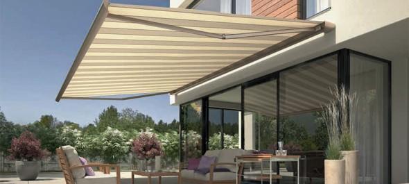 Create a shady patio