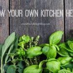Fresh Design Guide: Growing kitchen herbs