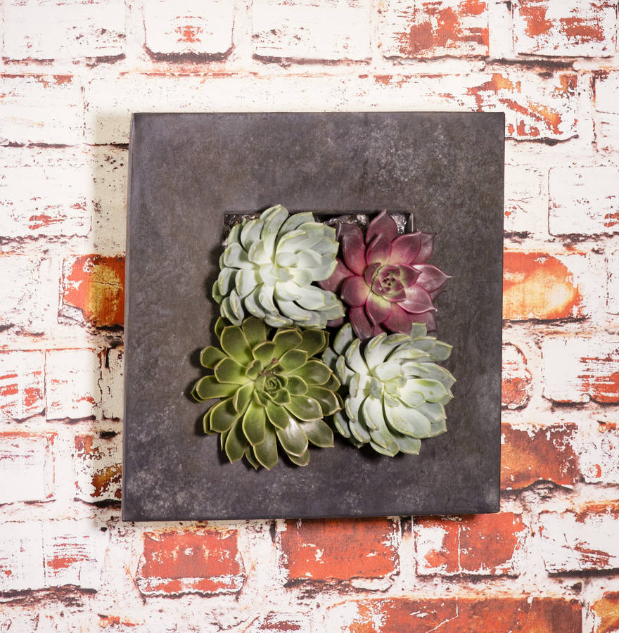 Love these unusual living wall planters! The succulents work so well in them.