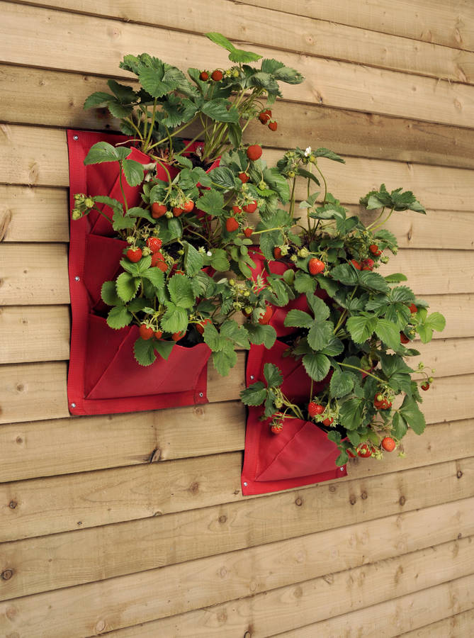 Great idea for growing salad, fruit, veg or herbs in a small space - vertical wall hanging garden planters.