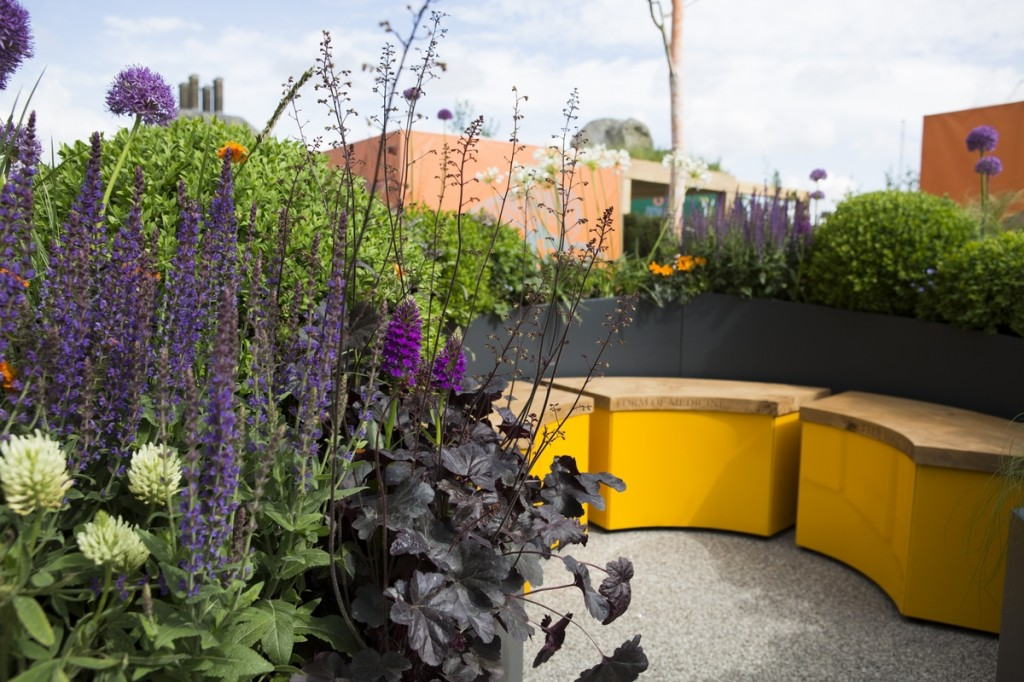 The Sir Simon Milton Foundation Urban Connections Garden. Designed by Lee Bestall. RHS Chelsea Flower Show 2016
