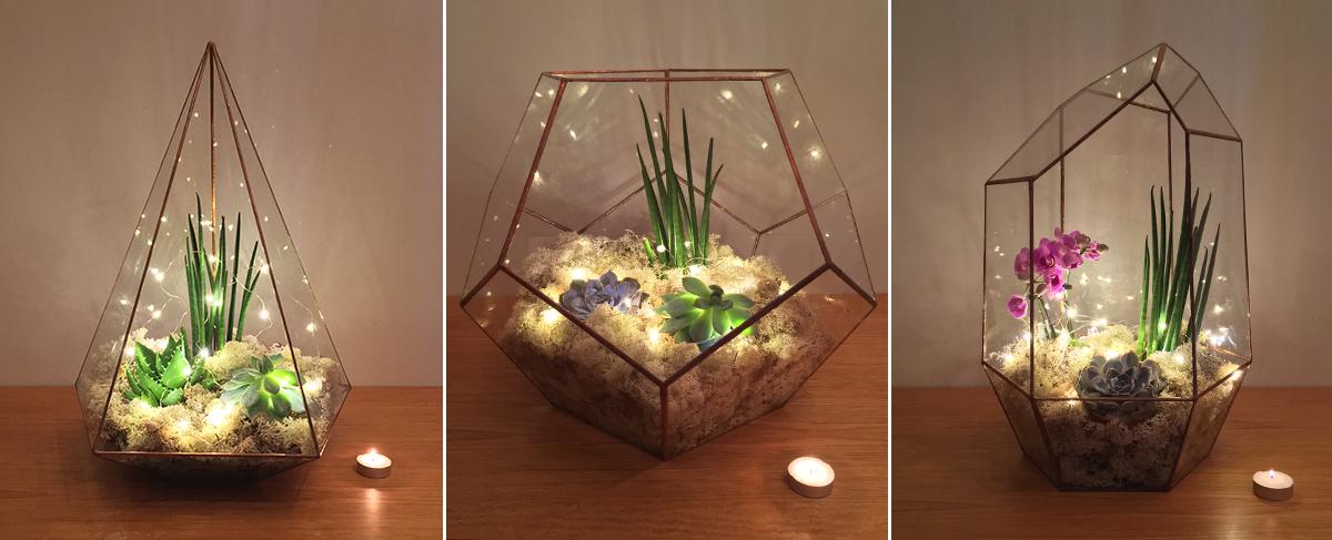 Image Result For Dish Garden Plants